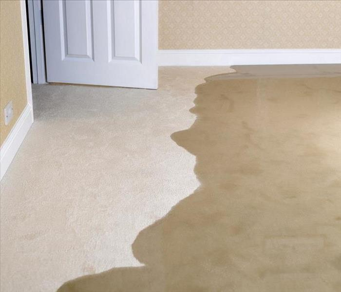 Water Damage Water Damage and How It Affects Homes in Los Angeles