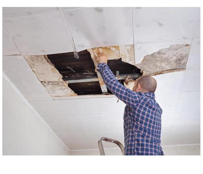 Mold Remediation What Are The Preventative Steps For Mold Remediation In Los Angeles Homes