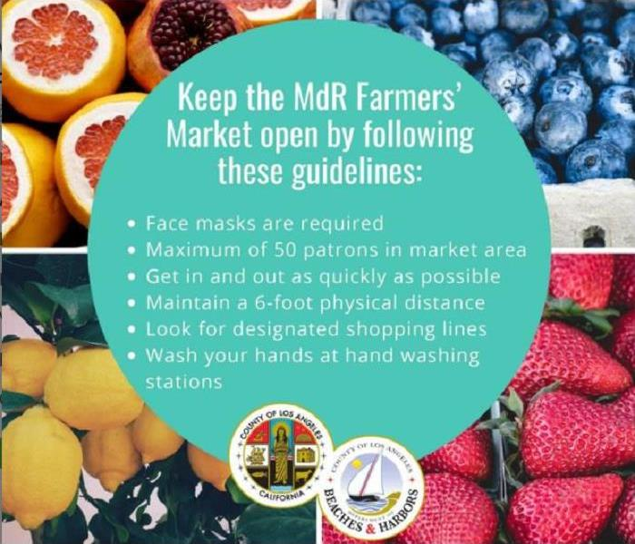 Fruits from MDR Farmers' Market. Bullet points overlaying with safety tips