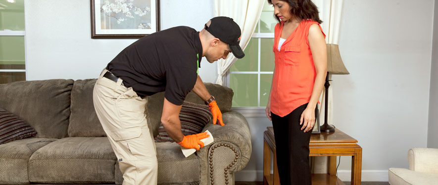 Marina del Rey, CA carpet upholstery cleaning